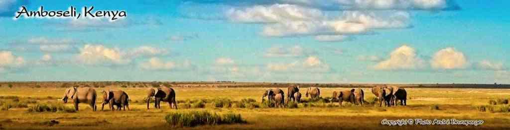 Amboseli - Safaris 3jours Tsavo Amboseli Kenya
