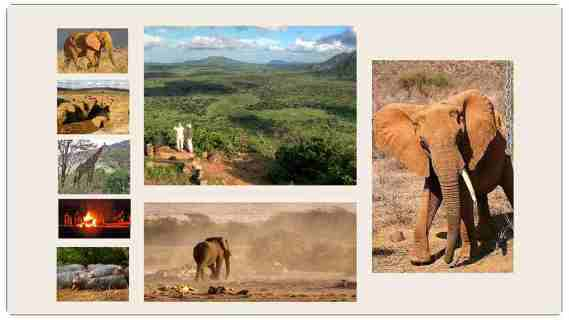 Safaris Tsavo Est Kenya
