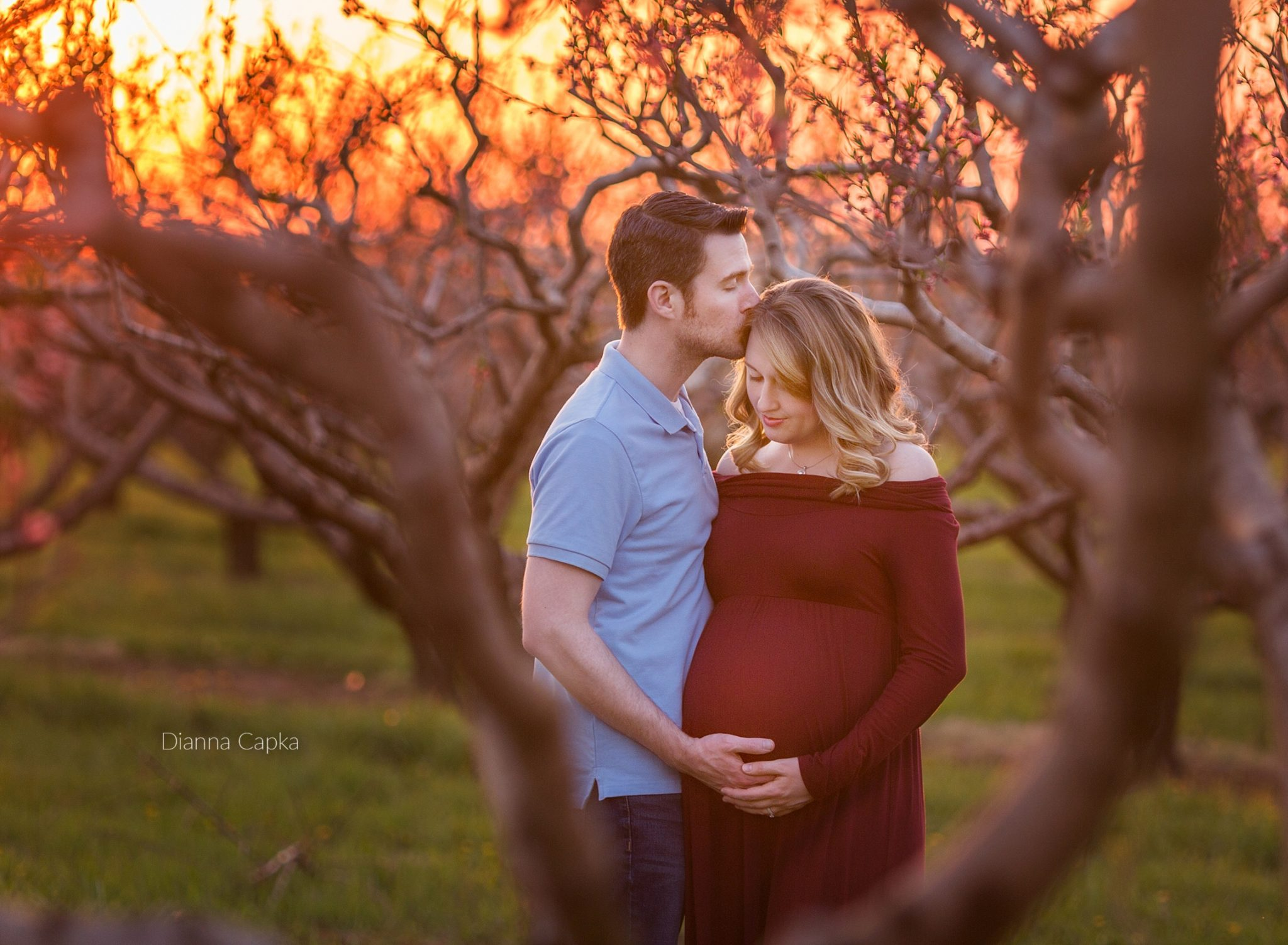 Sunset Orchard maternity session Lancaster County PA