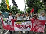 No Nukes Day Tokyo June 28 2014 - 6