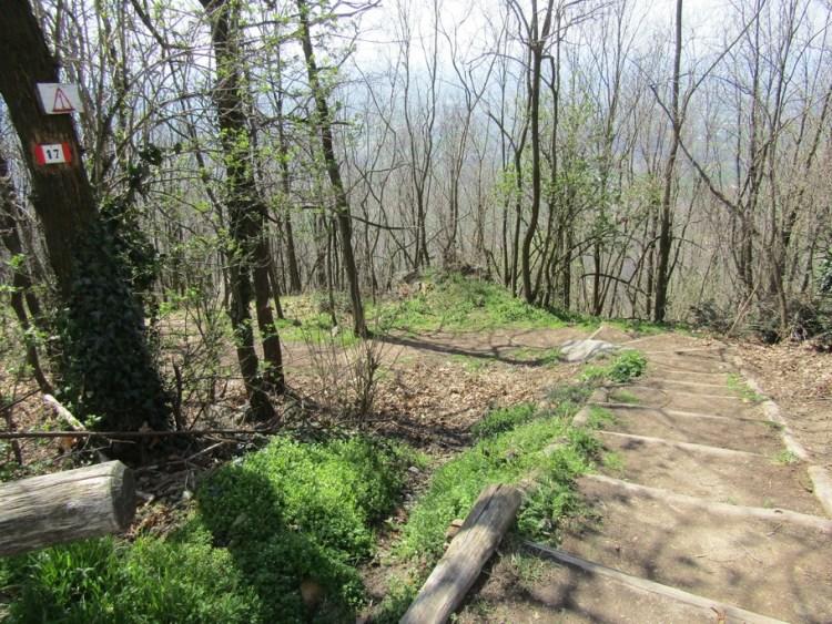 sentiero 17 Monte della Madonna