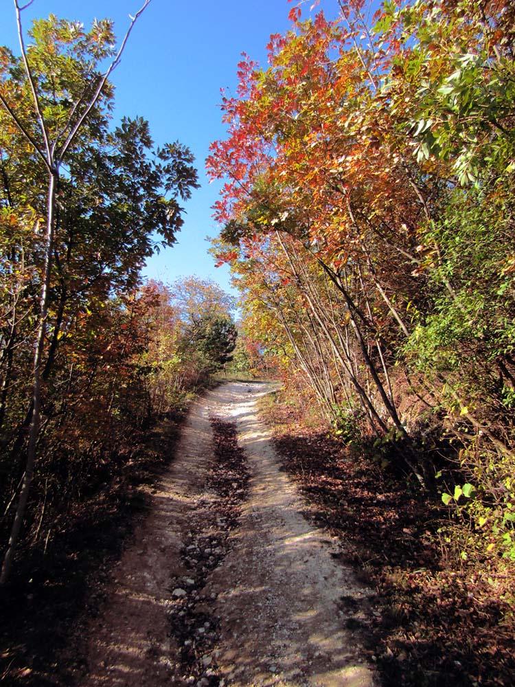 sentiero 11 monte cinto