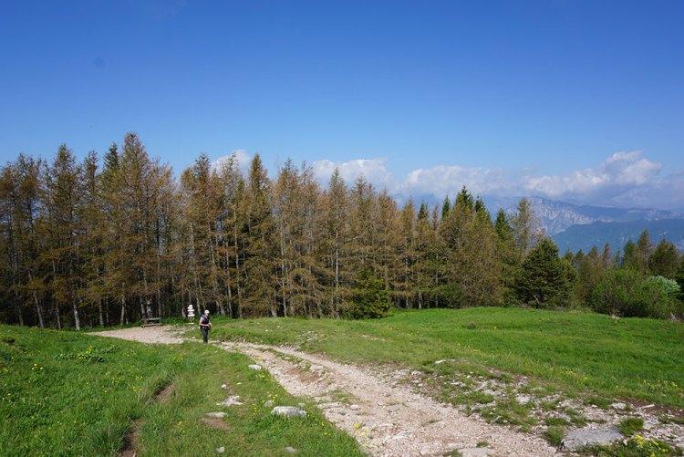 sentiero per il monte Stivo