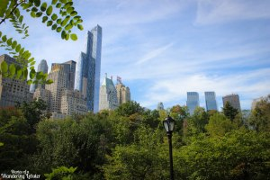 NYC skyline from Central Park