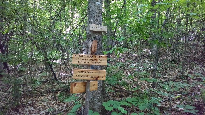 Bald Peak Trail Pleasant Mountain