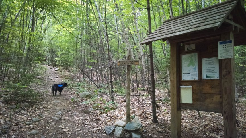 Bald Peak Trail Pleasant Montain