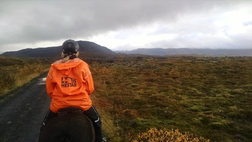 Lava fields horseback riding in Iceland travel Iceland for under $1000