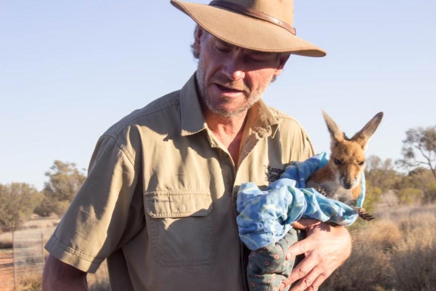 [img] Kangaroo Sanctuary Brolga