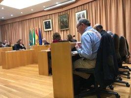 Lució en el Pleno el portavoz del PP, Francisco Delgado Bonilla, unos tirantes con la bandera de España en homenaje a la persona asesinada recientemente por lucir unos tirantes análogos.