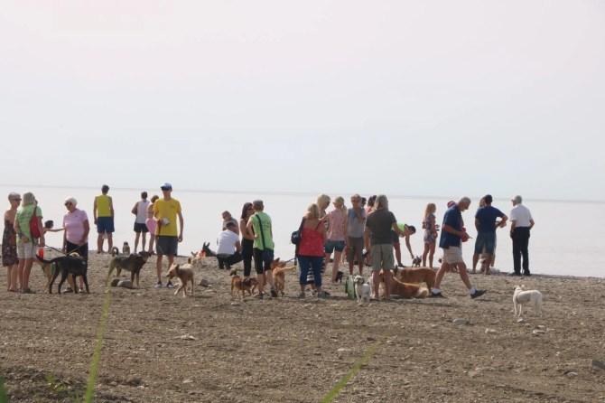 Este fin de semana ha tenido lugar la inauguración de la primera playa canina de Torrox.