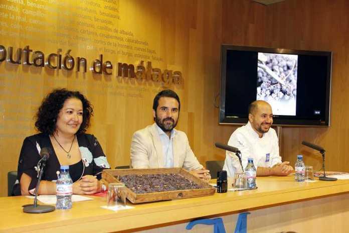 Sabor a Málaga participará en las actividades del II Mes de la Pasa de Vélez-Málaga