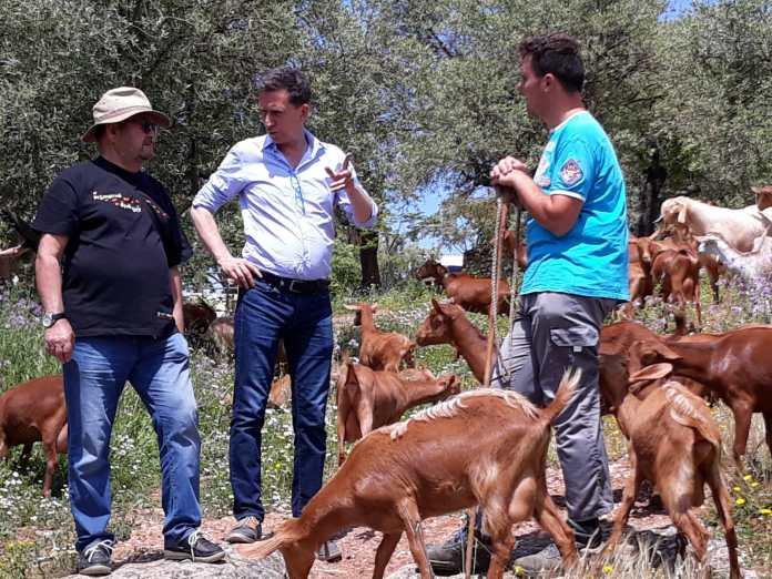 La Diputación de Málaga y Cicerones Rurales editan un manual para fomentar el agroturismo en la provincia