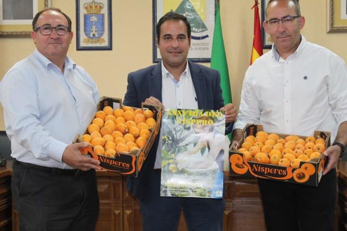Sayalonga celebra este domingo el XXXV Día del Níspero con más de 2.000 kilos de este fruto para degustar