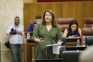 El Parlamento solicita la modificación urgente de la orden de reducción de módulos para que atienda las peticiones andaluzas
