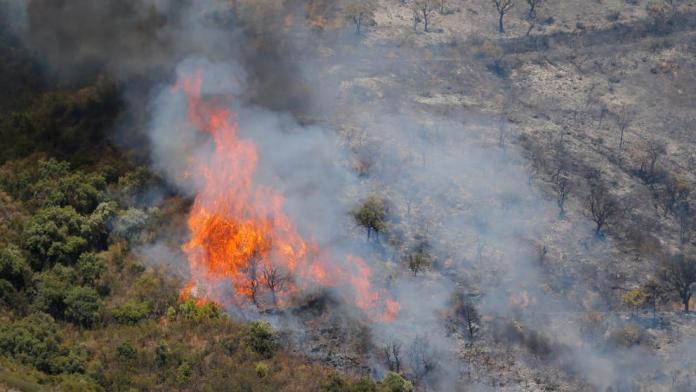 Más de 2.000 desalojados por un incendio en Estepona
