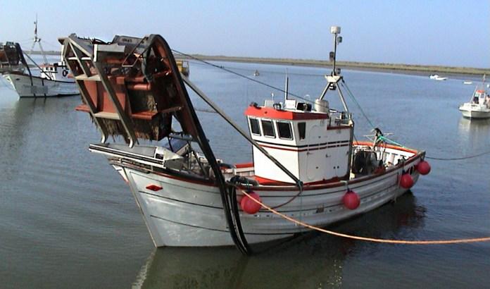 Ayudas más accesibles a los pescadores por las paradas temporales