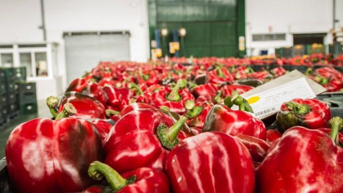 El sector agroalimentario andaluz inicia 2020 con más de 1.000 millones en exportaciones, un 2% más