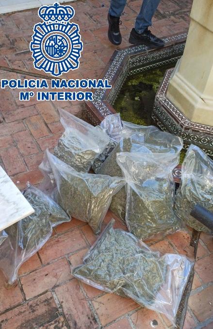 Desarticulada en Marbella una red criminal de origen inglés dedicada al tráfico clandestino de marihuana