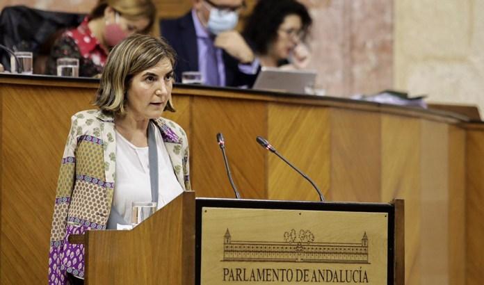 El Parlamento convalida el decreto ley que recoge estos incentivos de entre 900 y 1.200 euros y la agilización del procedimiento de reconocimiento de la situación de dependencia