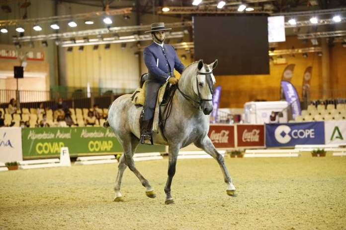El jinete veleño Manuel Valverde Galán, primer clasificado de la Copa ANCCE de Equitación de trabajo (Doma) en SICAB 2020