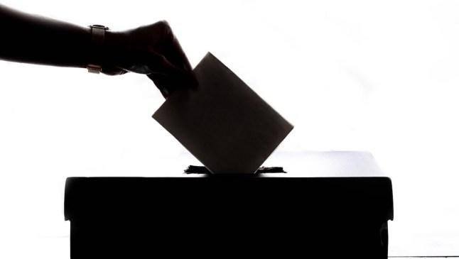 votación pexels