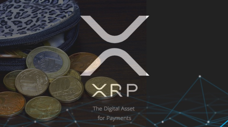 xrp wallets canva