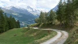 alpes_suizos_suiza