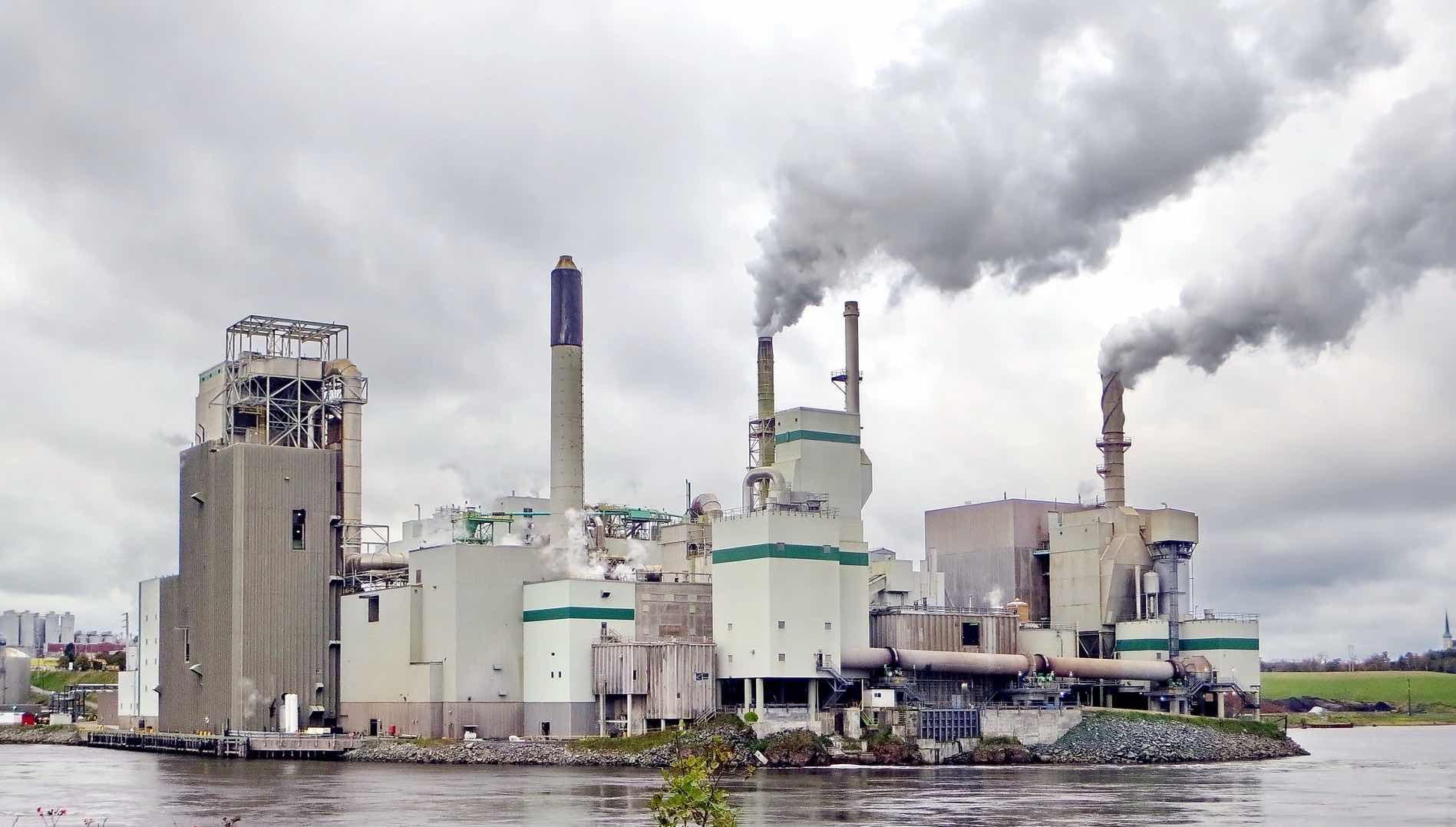 créditos carbono tokenizados