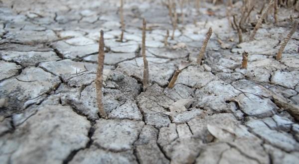 """""""La influencia humana"""" principal factor en Cambio Climático"""