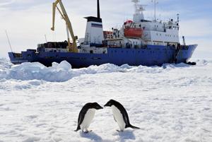 Bloqueado en la Antártida el buque chino que ayudó a pasajeros de barco ruso