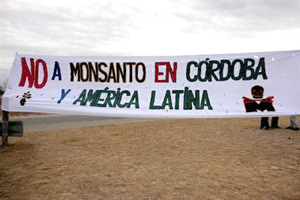 Tribunal argentino prohibió a Monsanto construir planta en Córdoba