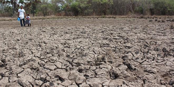 Los fenómenos climáticos extremos seguirán en 2017