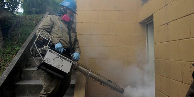 Casos de dengue y chikungunya a la baja: MINSAL
