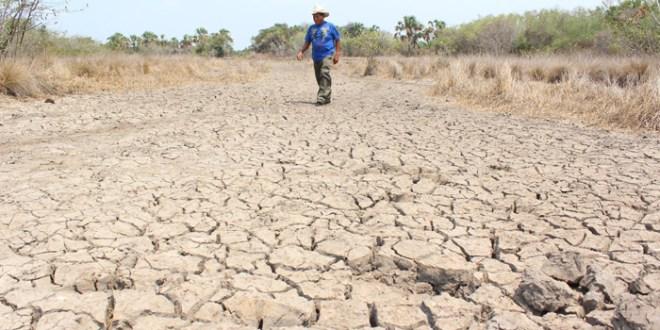 Dos millones de personas afectadas por sequía en Centroamérica