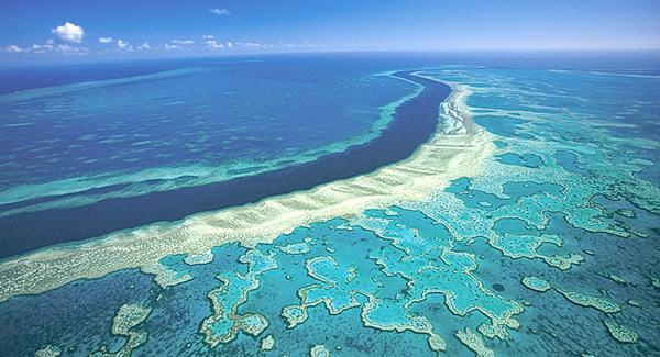 Proyecto minero amenaza la Gran Barrera de Coral de Australia
