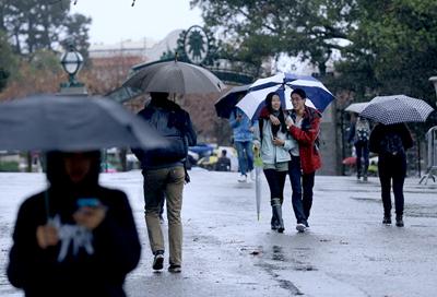California canta bajo la lluvia