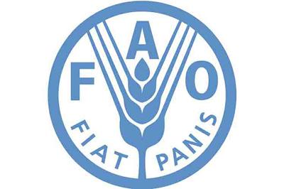 Unas 20 millones de personas corren riesgo por hambre, según FAO