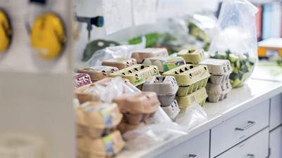 Los países afectados por el escándalo de los huevos contaminados