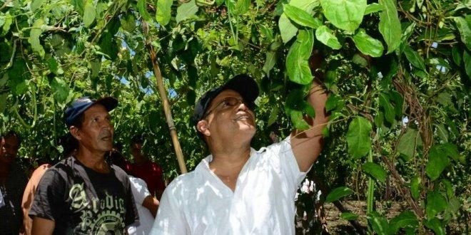 Vicepresidente Ortiz aspira a la agroindustria para fortalecer la producción