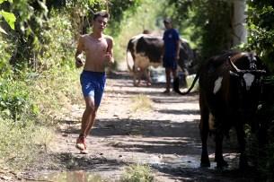 Un joven de El Paisnal realiza practicas en la calle principal del Caserío Las Garcitas, mientras dos vacas están pastando. Foto Diario Co Latino/ David Martínez.