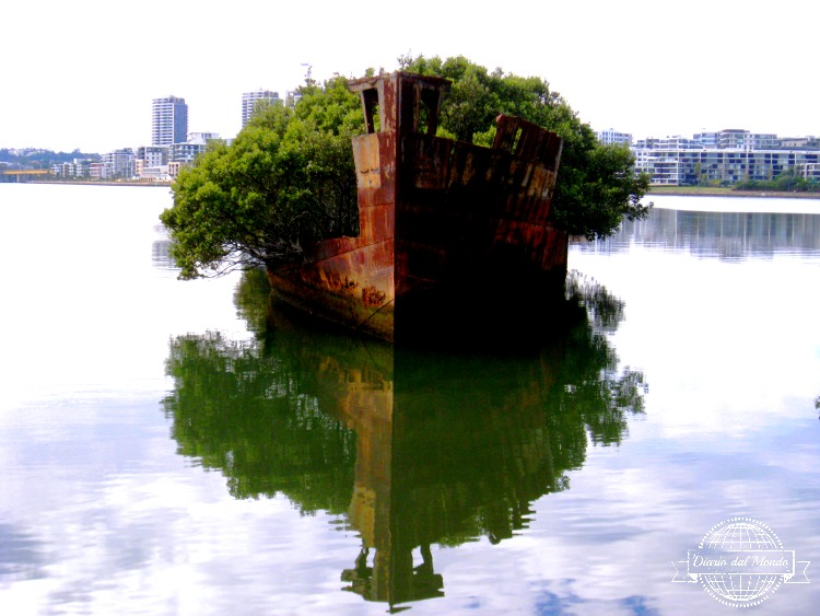 Homebush shipwreck
