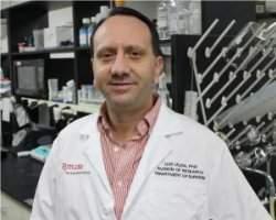 Acupuntura trata doenças inflamatórias fatais