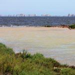 Imagen del desagüe de la depuradora de Los Nietos la semana pasada