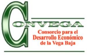 Más de medio centenar de empresas presentan su proyecto para desarrollar la imagen gráfica de la Marca Territorio para la Vega Baja