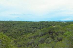 Cambiemos Orihuela se adscribe a las alegaciones de los grupos ecologistas al proyecto de impacto ambiental del Camping de Sierra Escalona