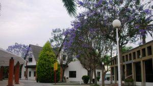 Las bibliotecas de la EPSO y del campus de las Salesas activan sus servicios
