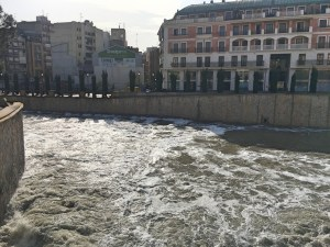 Orihuela solicita un análisis del agua del río Segura ante la aparición de espuma