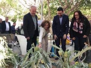 Almoradí vive una multitudinaria primera jornada del VI Congreso Nacional de la Alcachofa