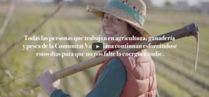 La Conselleria de Agricultura pone en marcha la campaña #EstasManosVanASeguir