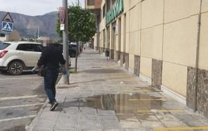 Limpieza Viaria pide colaboración ciudadana para no desechar residuos en las calles como guantes o excrementos de mascotas